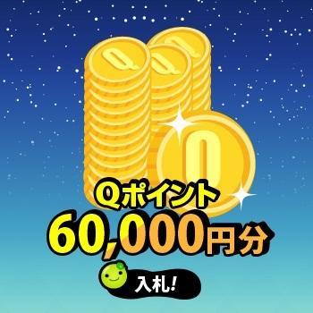 Q-Point6万円分!