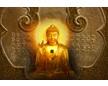 Buddha佛缘堂