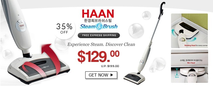Korea HAAN Steam Cleaner
