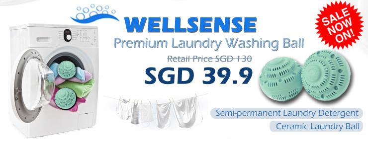 Wellsense Premium Laundry Washing Ball