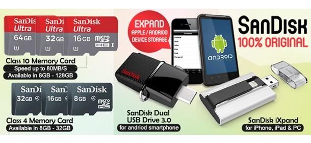 Sandisk Memory Card and Thumb Drive