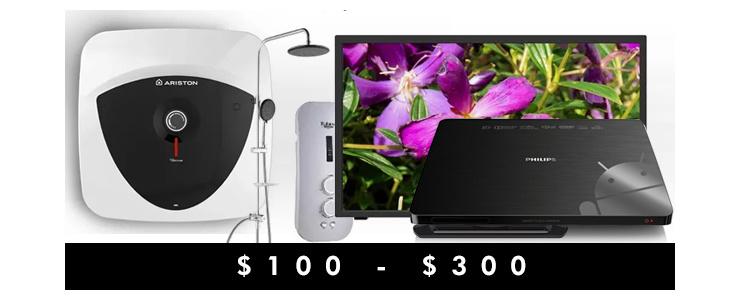 $100 - $300