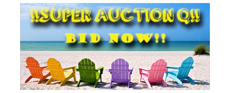 Super Auction Q