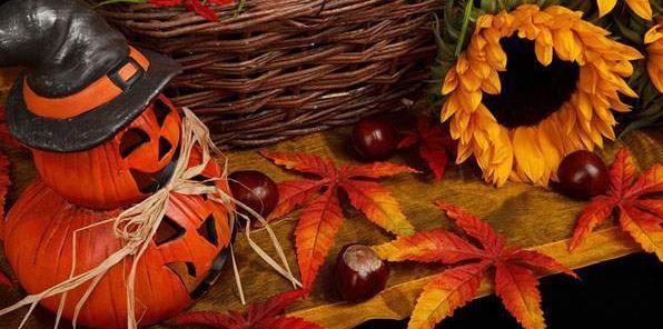 ハロウィン&秋のスポーツ特集