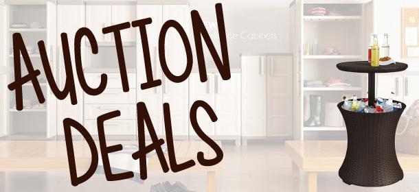 Massive Auction Deals!