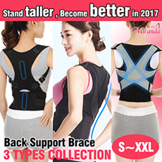 Back support brace collection
