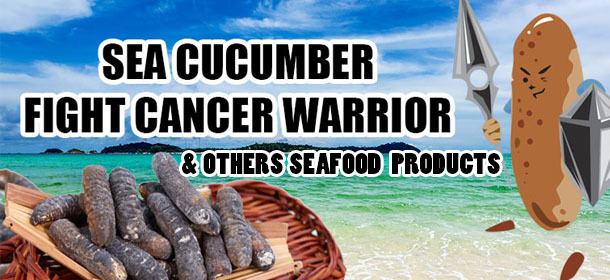 Sea Cucumber Fight Cancer Warrior