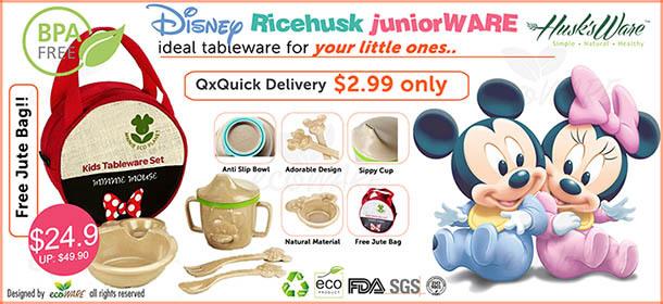 Husksware Disney juniorWARE