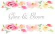 Glow & Bloom