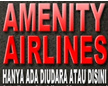 AMENITY AIRLINES   ONLINE SHOP