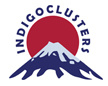 INDIGOCLUSTERS