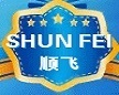 SHUN FEI INTERNATIONAL