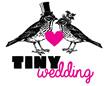 Tiny Wedding Sg