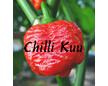 Chiili Kuu