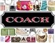 SG Coach Store