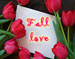 Fall-love shop