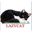 LazyCat Shop