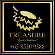 Treasure Concepts