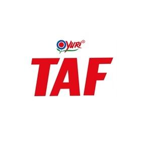Yuri Taf