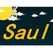 Saul E-store