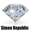 Simon Republic  jewellery