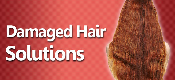 Damaged Hair Solutions