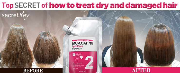 Top Secret of how to treat dry and damaged hair