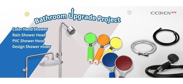 Bathroom Upgrade Project
