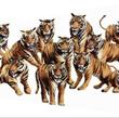 eleven tiger brand